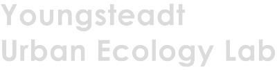 Youngsteadt Urban Ecology Lab Logo